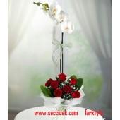 6 Adet Kırmızı Gül ile Tek Dal Orkide