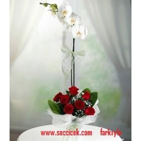 7 Adet Kırmızı Gül ile Tek Dal Orkide